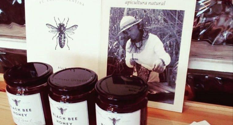 Black Bee – Nicolau da Costa