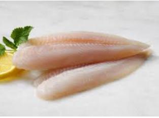 Silva Fish – Elvas