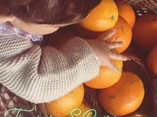 Frutas S. Cristóvão