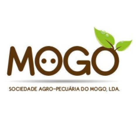 SAP MOGO