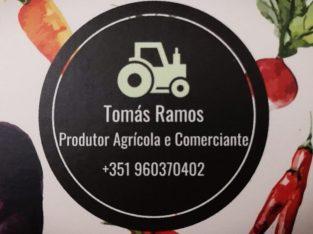 Tomas Ramos