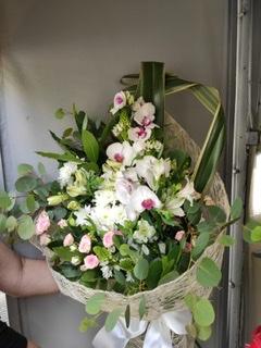 D Flores